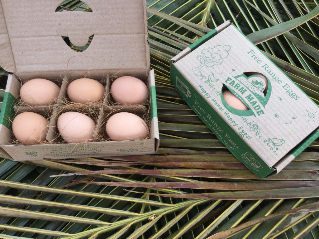 Free range farm eggs
