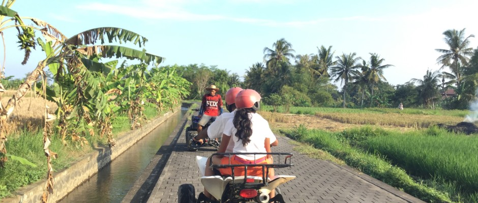 Quad ride in the rice fields of Bali-Ubud
