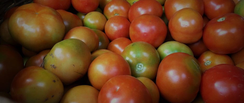 Heirloom tomato (Nattu Thakkali)
