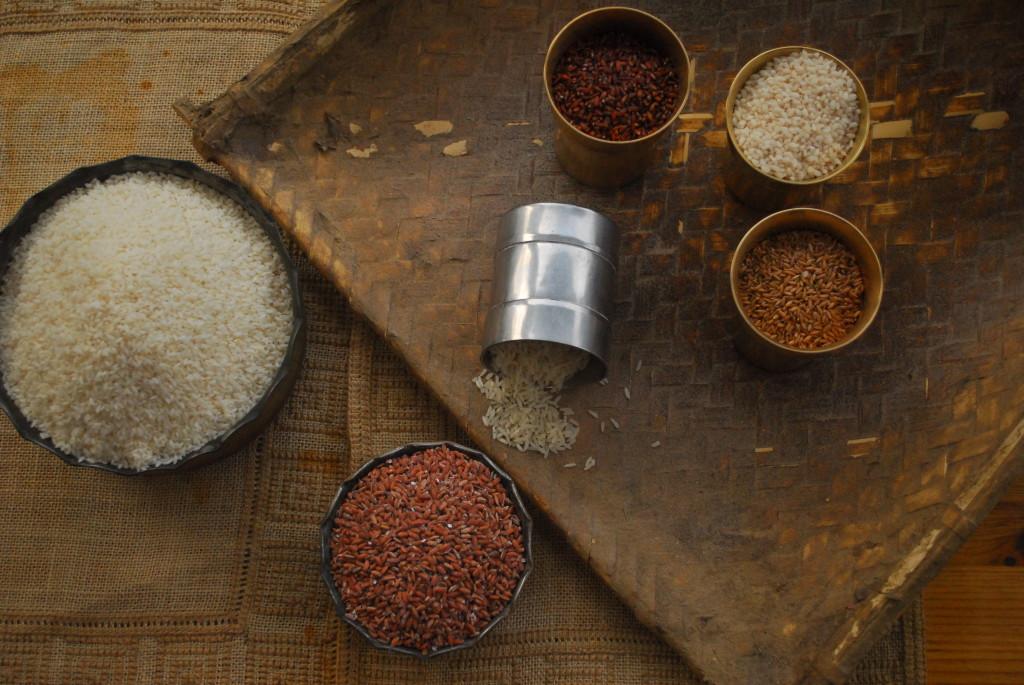 Rice grains (8)