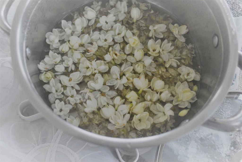 Jasmine flowers in liquid